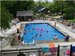 View larger image of People enjoying the swimming pool at LAKE PEMAQUID CAMPGROUND image #3