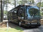 View larger image of Trailers and RVs camping at ALLATOONA LANDING MARINE RESORT image #1