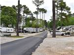View larger image of Trailer and RV sites at ATLANTA SOUTH RV RESORT image #7