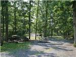 View larger image of An RV site with a park bench at DRUMMER BOY CAMPING RESORT image #7