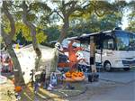 View larger image of Halloween decorations at campsites at OCEAN LAKES FAMILY CAMPGROUND image #5
