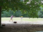 View larger image of Man playing frisbee golf at POHICK BAY REGIONAL PARK image #8