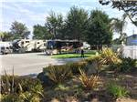 View larger image of RVs and trailers at campground at PISMO COAST VILLAGE RV RESORT image #5