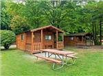 View larger image of Cabins and picnic tables at JELLYSTONE PARK TM AT BIRCHWOOD ACRES image #7