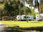 View larger image of RVs and trailers at campgrounds at BULOW RV RESORT image #1