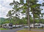 View larger image of Trailers camping at YOGI BEARS JELLYSTONE PARK CAMP-RESORT LURAY image #5