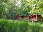 View larger image of Log cabins with decks at YOGI BEARS JELLYSTONE PARK CAMP-RESORT LURAY image #7