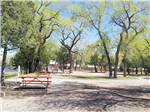 View larger image of Picnic tables at SOUTH FORK CAMPGROUND image #4