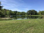 View larger image of Lake view with green grass and trees at COOPERSTOWN SHADOW BROOK CAMPGROUND image #5
