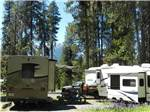 View larger image of DIAMOND LAKE RV PARK at DIAMOND LAKE OR image #11