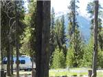 View larger image of DIAMOND LAKE RV PARK at DIAMOND LAKE OR image #7