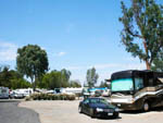 View larger image of A Class A motorhome parked in a site at VACATIONER RV PARK - SUNLAND image #11