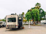 View larger image of Back view of an RV parked in their site at VACATIONER RV PARK - SUNLAND image #12