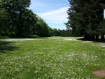 View larger image of Grass area at EUGENE KAMPING WORLD RV PARK image #15