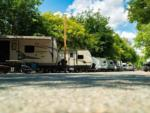 View larger image of A row of full RV campsites at WAIIAKA RV PARK image #1