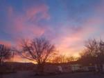 View larger image of An aerial view of the campsites at WAIIAKA RV PARK image #6