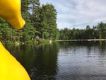 View larger image of View from on the lake looking toward wooded setting at ACRES OF WILDLIFE CAMPGROUND image #5