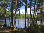 View larger image of View of the lake through the trees at ACRES OF WILDLIFE CAMPGROUND image #11