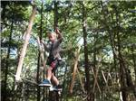 View larger image of Kid walking the rope in an obstacle course at WILD ACRES RV RESORT  CAMPGROUND image #7