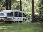 View larger image of A pop up trailer in a grassy area at LAKE GEORGE RIVERVIEW CAMPGROUND image #12