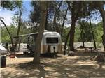 View larger image of Airstream trailer camping at RIVERNOOK CAMPGROUND image #1