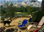View larger image of Tent camping with a dog at RIVERNOOK CAMPGROUND image #8