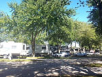 View larger image of Trailers camping at DOUBLE J CAMPGROUND image #4
