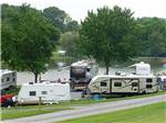 View larger image of Mother duck and chicks at WALNUT HILLS CAMPGROUND AND RV PARK image #6