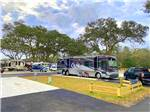 View larger image of Some of the paved pull thru RV sites at I-10 KAMPGROUND image #5
