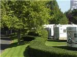 View larger image of Trailers parked next to grass and road at JANTZEN BEACH RV PARK image #9