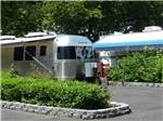 View larger image of Silver Airstream parked with awning next to green plants  at JANTZEN BEACH RV PARK image #10