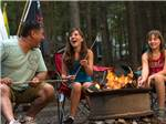 View larger image of Girls roasting marshmallows at RIP VAN WINKLE CAMPGROUNDS image #5