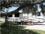 View larger image of Trailer camping at PADRE PALMS RV PARK image #6
