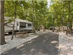 View larger image of Road leading into campgrounds at SEASHORE CAMPSITES  RV RESORT image #6