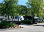 View larger image of SANTA CRUZ RANCH RV RESORT at SCOTTS VALLEY CA image #1