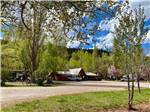 View larger image of One of the buildings surrounded by trees at ALPEN ROSE RV PARK image #3