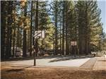 View larger image of Basketball court at TAHOE VALLEY CAMPGROUND image #7