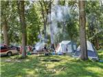 View larger image of Tents camping at OCONNELLS YOGI BEAR PARK image #2