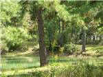 View larger image of Lake view at TALLAHASSEE EAST CAMPGROUND image #6
