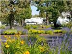 View larger image of Trailers camping at BENDSISTERS GARDEN RV RESORT image #1