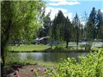 View larger image of Campsites among rich greenery near the pond at BENDSISTERS GARDEN RV RESORT image #3