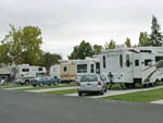 View larger image of Trailers and RVs camping at NAPA VALLEY EXPO RV PARK image #3