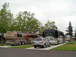 View larger image of RVs parked at NAPA VALLEY EXPO RV PARK image #5