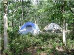 View larger image of Aerial view over playground at MARTHAS VINEYARD FAMILY CAMPGROUND image #5