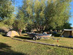 View larger image of Grassy tent site with a boat on a trailer at BEAVERHEAD RIVER RV PARK  CAMPGROUND image #5
