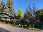 View larger image of Grass playground area with trees at BEAVERHEAD RIVER RV PARK  CAMPGROUND image #6