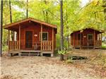 View larger image of Cabins with decks at TRANQUIL TIMBERS CAMPING RETREAT image #6