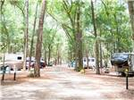 View larger image of Trailers and RVs camping at JEKYLL ISLAND CAMPGROUND image #3