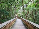 View larger image of Bridge over water at JEKYLL ISLAND CAMPGROUND image #4