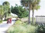 View larger image of Kids biking at JEKYLL ISLAND CAMPGROUND image #8